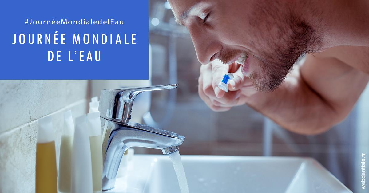 https://dr-feredj-elisabeth.chirurgiens-dentistes.fr/Journée de l'eau 2